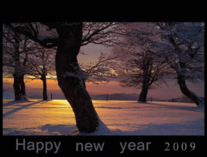 2009-happy-new-year